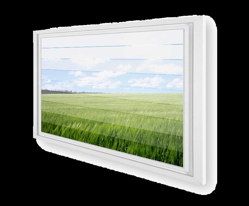 gauzy blinds window